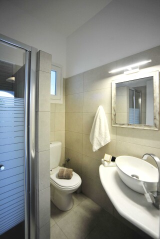 standard triple room anixis studio shower